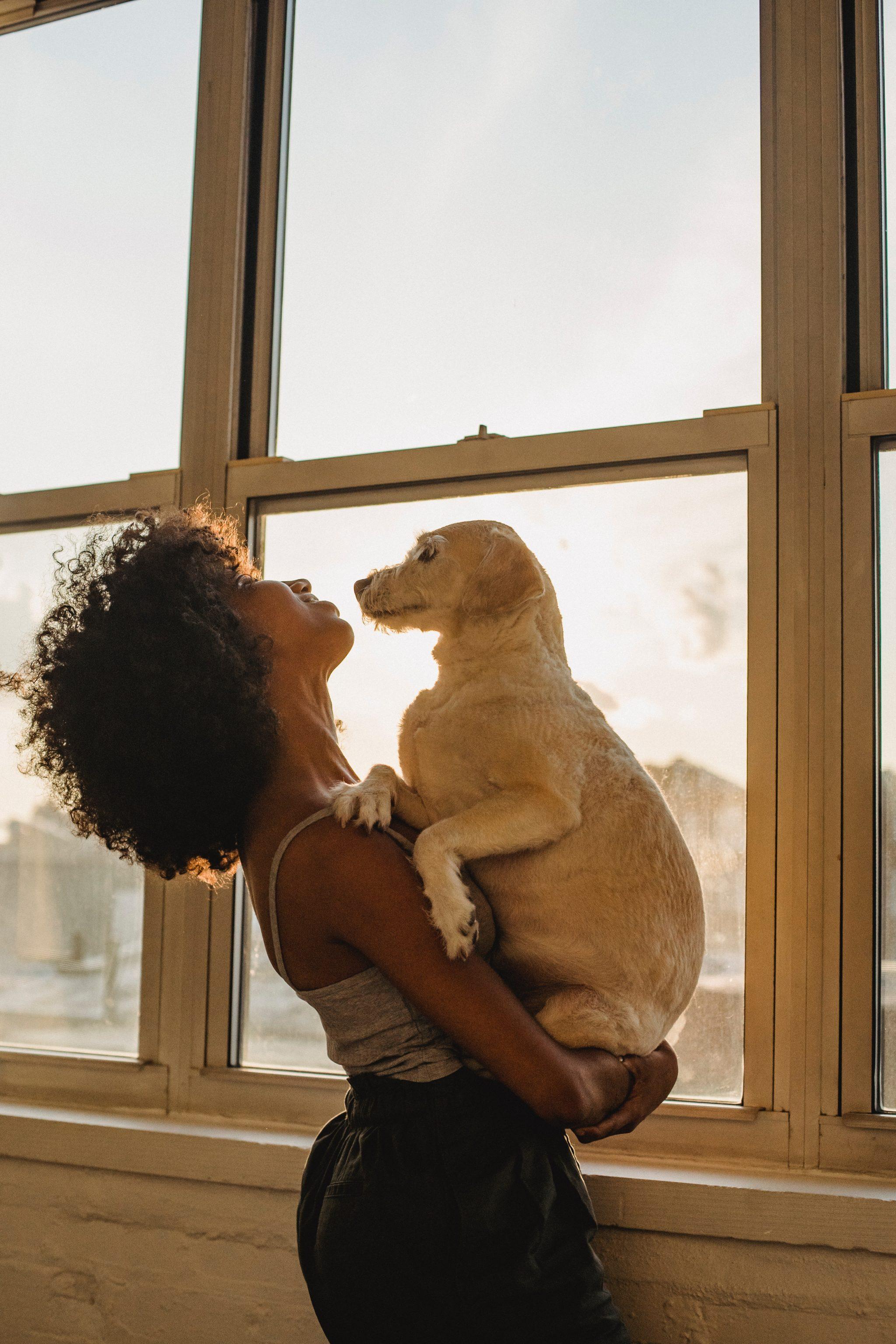 Os benefícios da companhia animal para os seres humanos